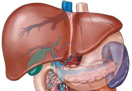 детоксикация на черен дроб