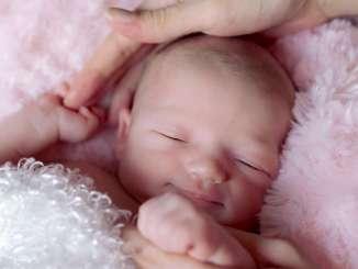 новородено