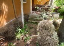 Входа на къща с българска тип архитектура