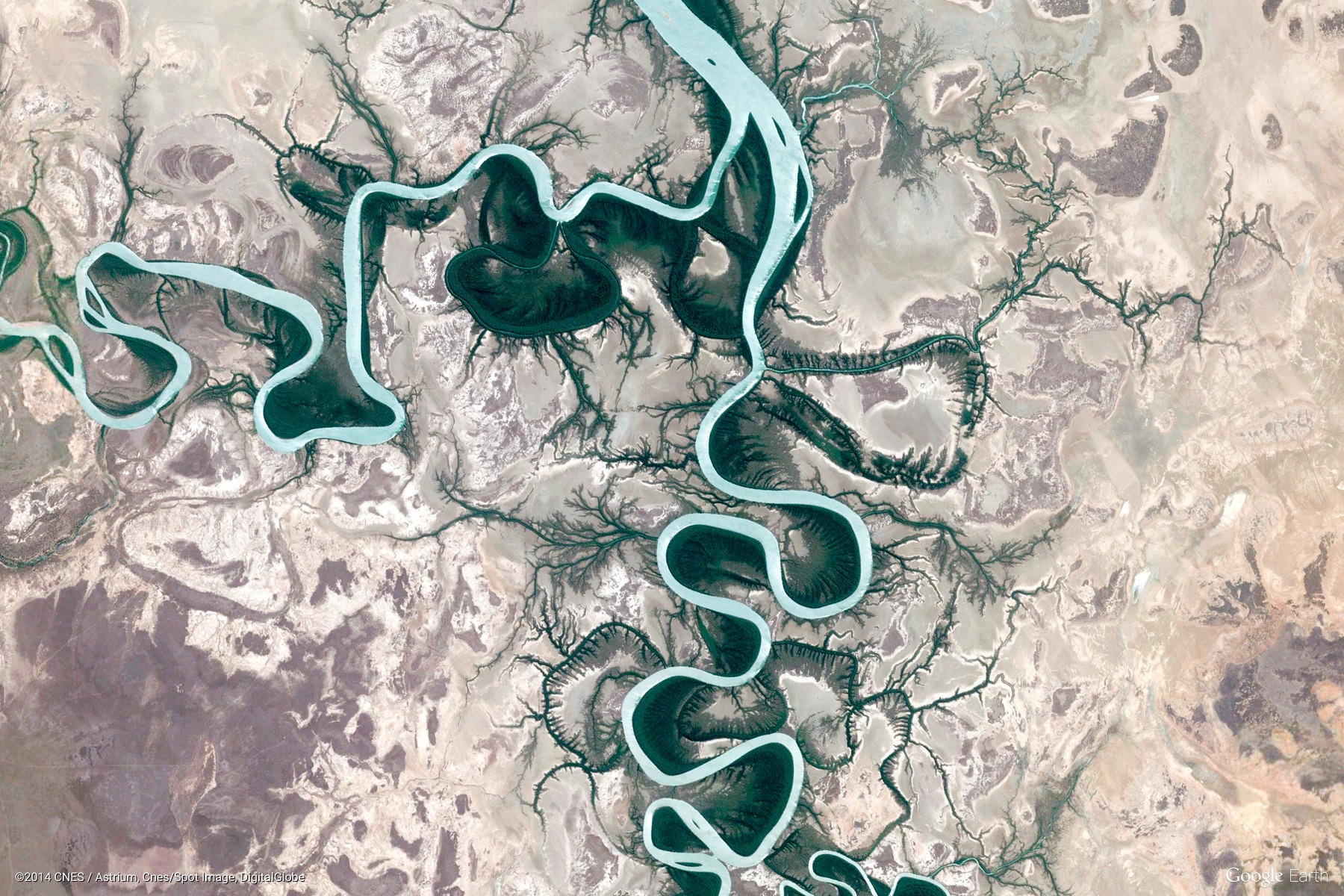 hight resolution of album 200 of my favorite google earth view wallpapers tags r wallpapers art modern art doodle drawing animal atlas diagram map reptile snake