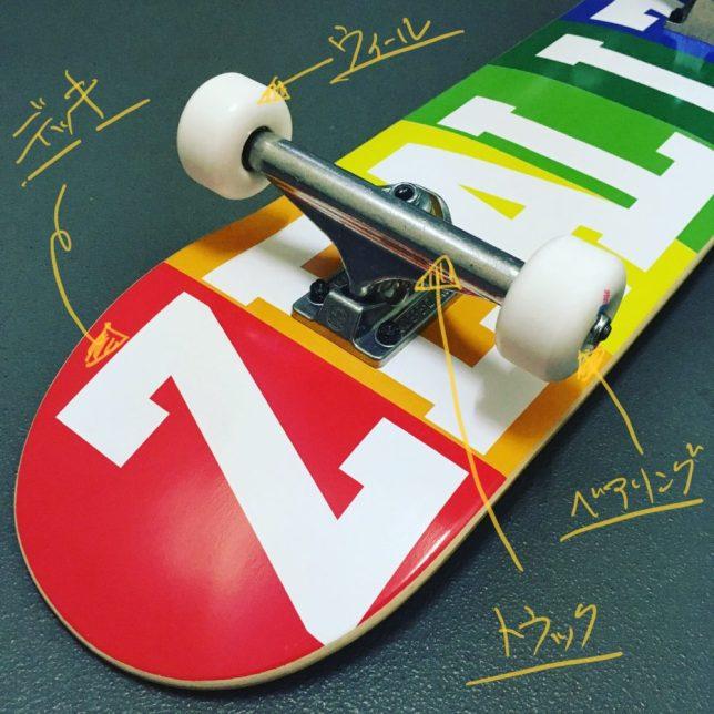 ZEALIZE Skateboard
