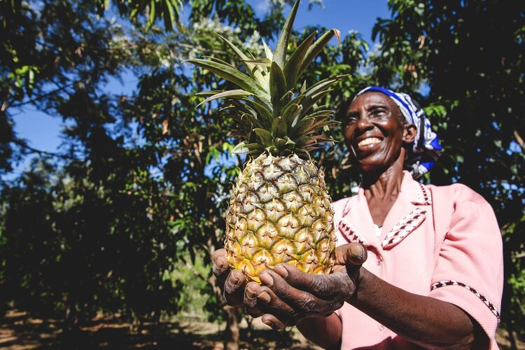 feeling Jali Pineapple