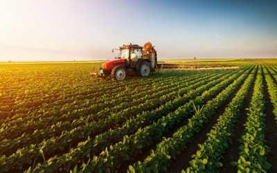Découvrez la nouvelle subvention : Soutien aux exportations Bioalimentaires