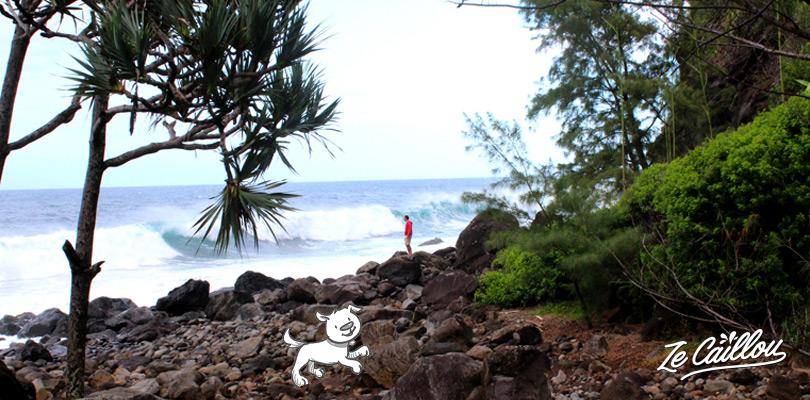 Déferlement des vagues et piscine naturelle à Manapany les Bains