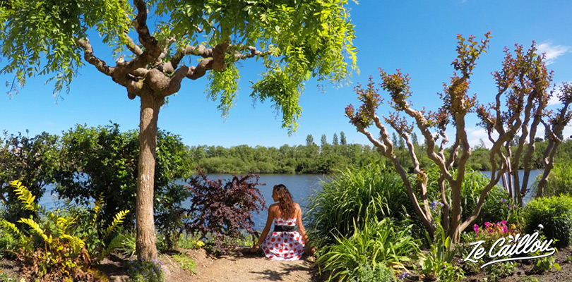 Visit the Flower Garden of Mimizan close to the lake and hotel in the Landes, Ze Caillou