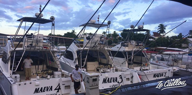 La flotte de bateaux de pêche au gros de Maevasion au port de saint-gilles les bains