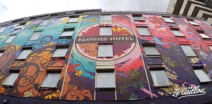 Hotel peint avec les dessins du livre Ulysses de James Joyce en Irlande