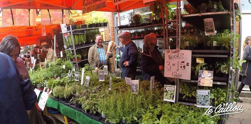 Traverser le beau marché aux fleurs de Columbia road entre Bricklane et Shoredich à Londres.