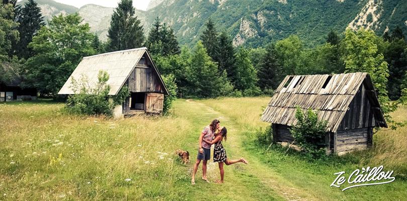 La belle prairie autour du lac de Bohinj en Slovénie.