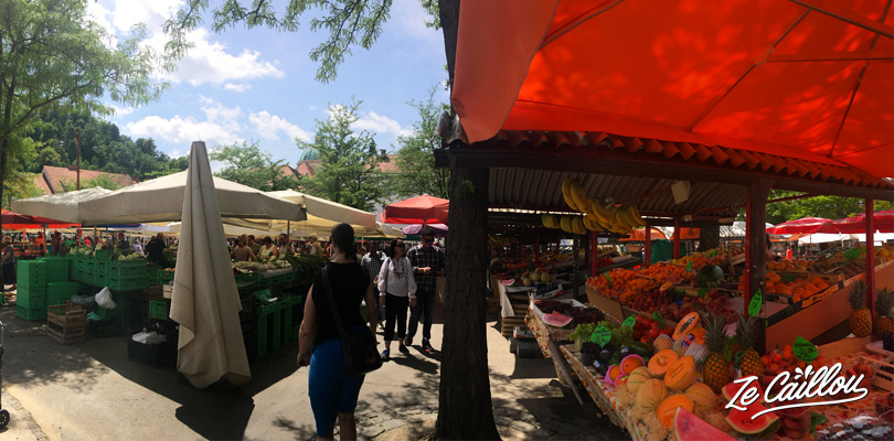 Central market of Ljubljana with fruits and vegetables, discover Slovenia.