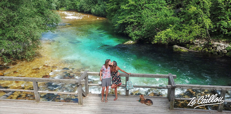 Perfect water color at Bohinj lake in the Triglav national park in Slovenia, enjoy vanlife.