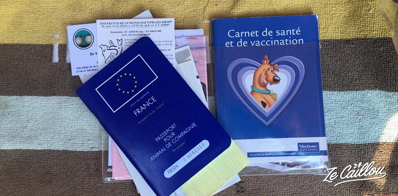 Vous avez besoin du passeport européen de votre animal pour voyager en ferry avec votre chien.