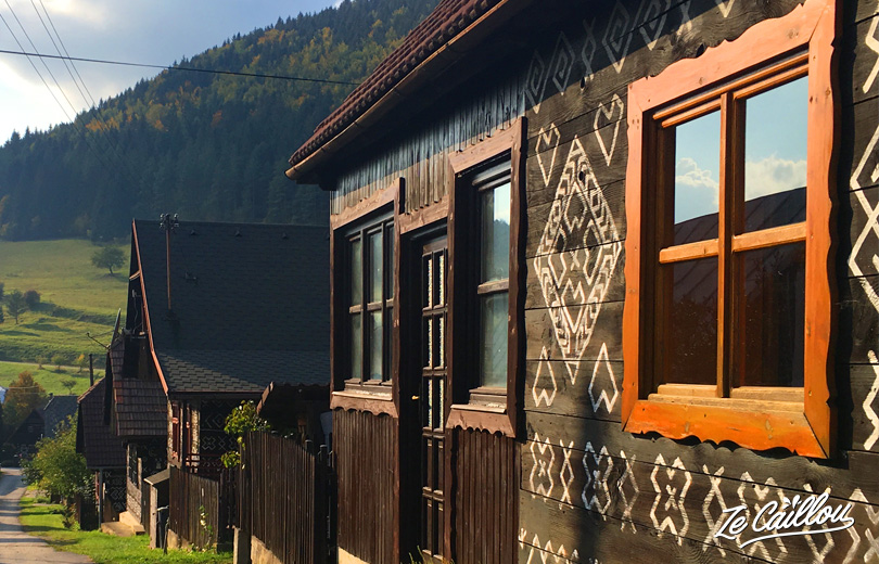White patterns on Cicmany traditional houses in Slovakia represent our tissue pattern