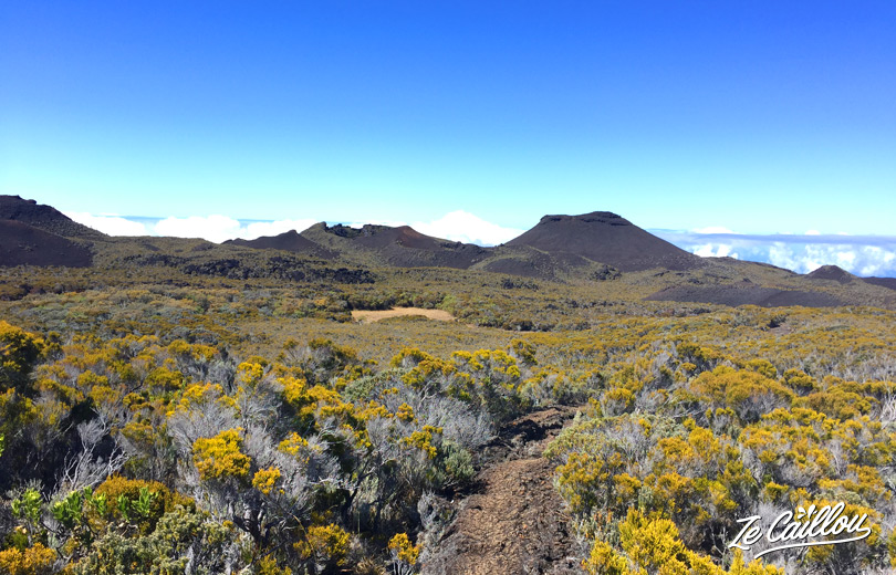 View on Puys Ramond, formers volcano's craters during our grr2 day 9.