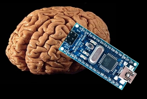 https://i0.wp.com/zedomax.com/blog/wp-content/uploads/2009/10/brain-arduino-hack.jpg