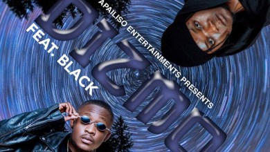 Dizmo ft. Black - Panda Ukanilowe Mp3