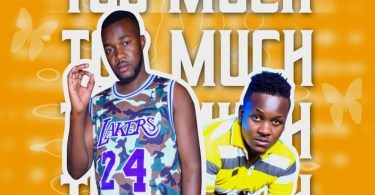 DJ A.I.C ft. So-Manje - Too Much
