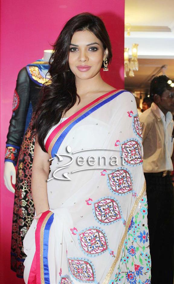 Sara Loren Hd Wallpaper Sara Loren In Designer Manish Arora Saree Zeenat Style