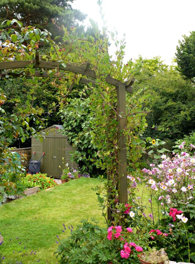 Going for cottage garden look