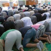 Il faut fermer 450 mosquées radicales en France