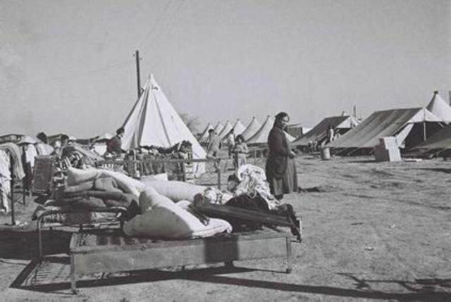 jewish-refugee-camp
