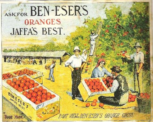 כרזה של פרדס בן עזר  על תפוזי יפו 1924