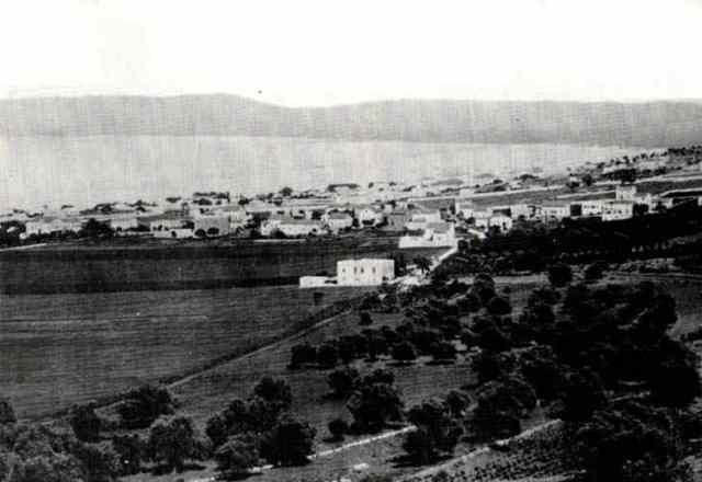 חיפה 1893