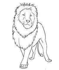 Löwe 2 zeichnen lernen schritt für schritt tutorial