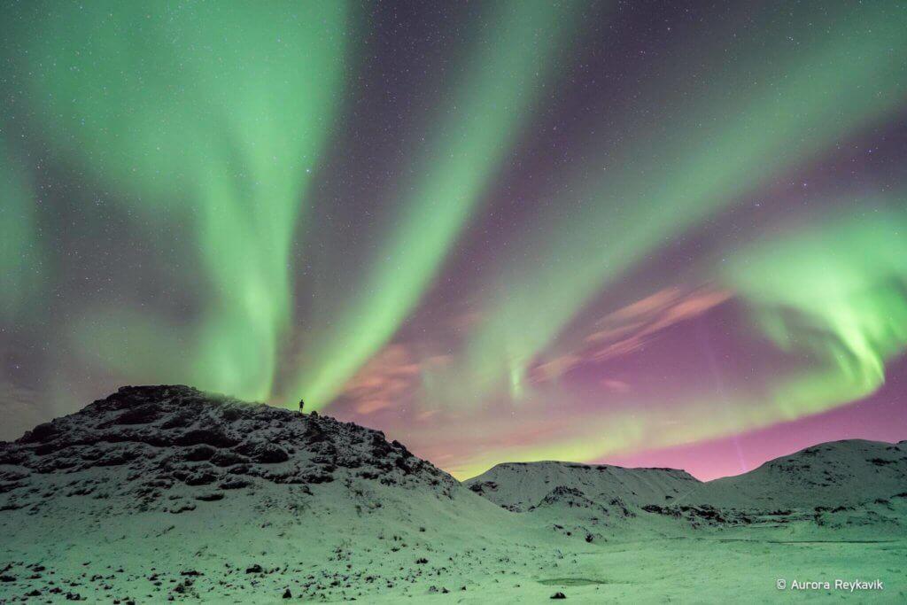 Nordlichter in Island  das rt der Profi  Zeig mir Island