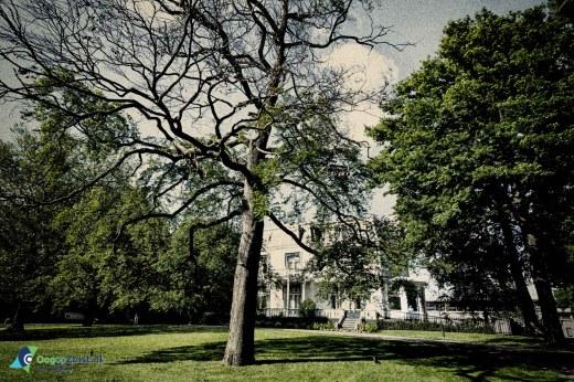 Gouden jaren - Het Behouden Huis Villa Blanca Zeist
