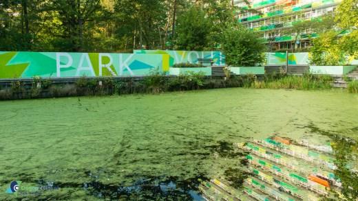 Vollenhove park krijgt fris kleurtje