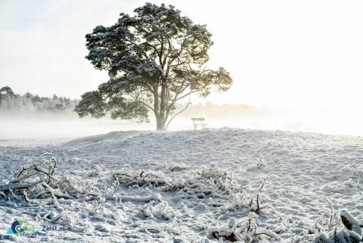 Heidestein in de Sneeuw met pasen 2008