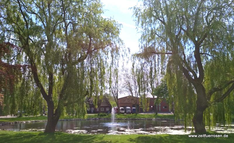 Dorfteich in Petersdorf