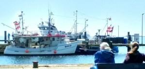 Fehmarn am Hafen