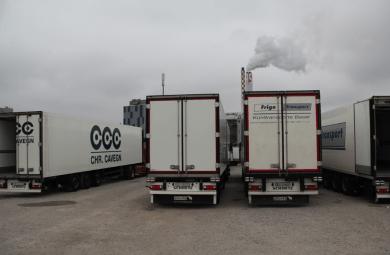 Frigo Kühltransporte