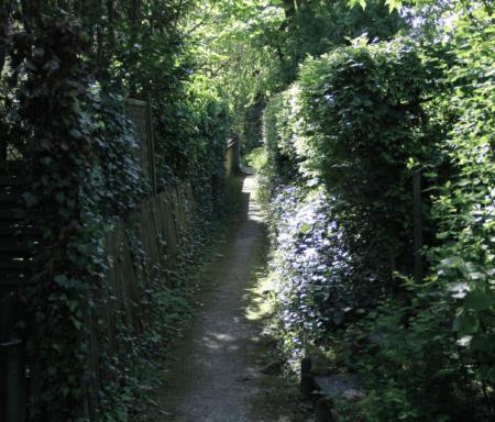 Mooswegli mit Gärten