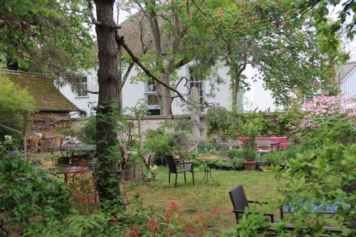 Friedhofgasse Garten April 17