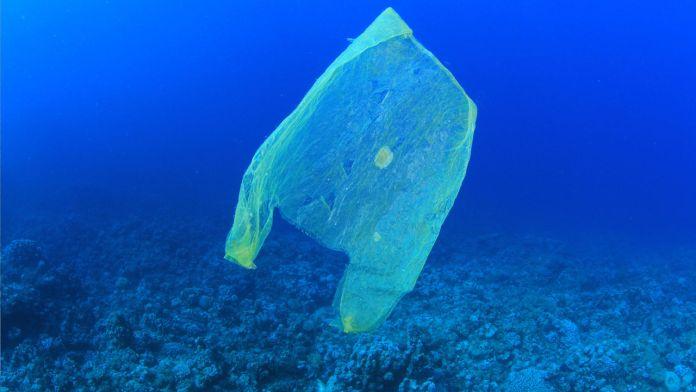 Tausende Tonnen Plastikmüll im Mittelmeer