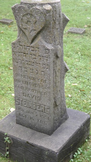 David Steinberg's monument at The Baron de Hirsch Cemetery
