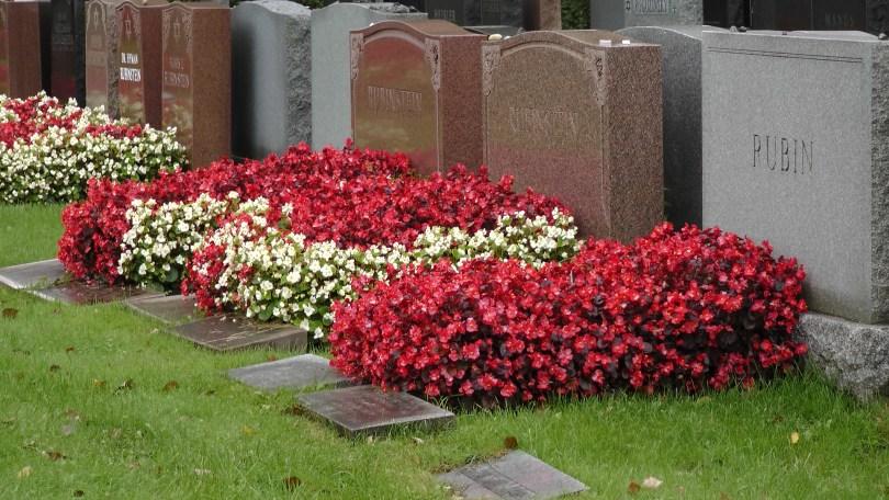 The Baron de Hirsch Cemetery