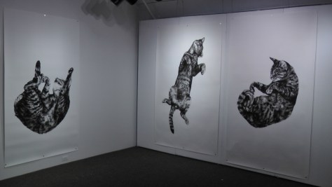 "Kate Puxley, Animals in the City: Gatto Italiano #3, #4 & #5, charcoal on paper. approx 85"" x 52""/ch"