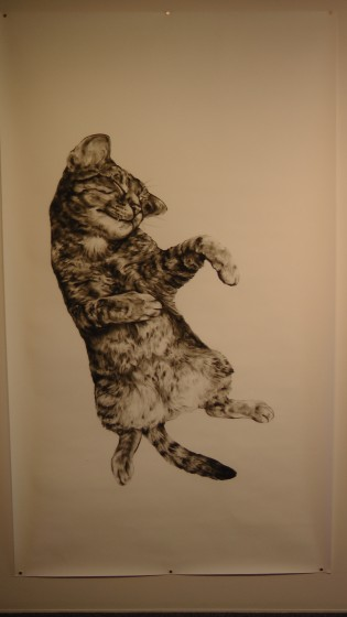 "Kate Puxley: Animals in the City: Gatto Italiano #1, Charcoal on Paper, approx 85"" x 52"""