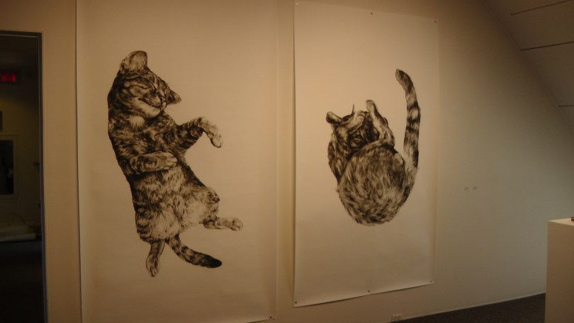 "Kate Puxley, Animals in the City: Gatto Italiano #1 & #2, charcoal on paper. approx 85"" x 52"""