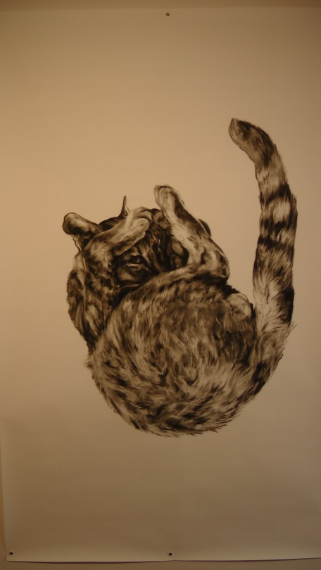 """Kate Puxley: Animals in the City: Gatto Italiano #2, Charcoal on Paper, approx 85"""" x 52"""""""