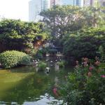 百鳥苑のフラミンゴ