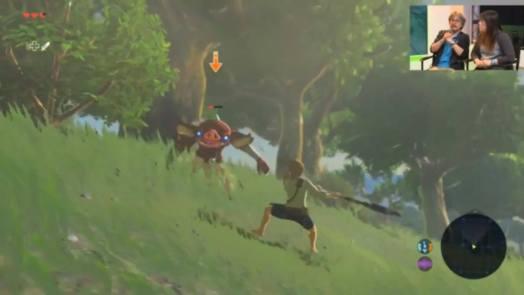 Bokoblin combat