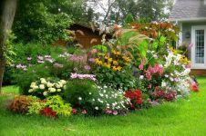 Ландшафтний дизайн для новачків. Які бувають квітники?