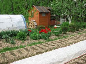 дизайн саду - зонування ділянки