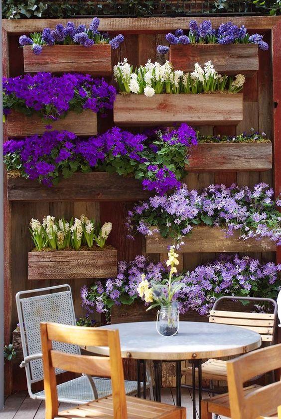 квіти в контейнерах