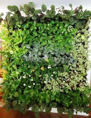 вертикальне озеленення зображення 56